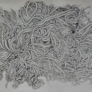 (CreativeWork) Entanglement by Bridgit Thomas. drawing. Shop online at Bluethumb.