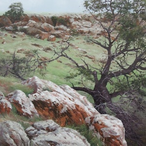 (CreativeWork) Moresby Ranges by Jana Vodesil-Baruffi. oil-painting. Shop online at Bluethumb.