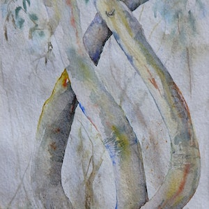 (CreativeWork) Snow Gums in the Mist by Vicki Reid. watercolour. Shop online at Bluethumb.