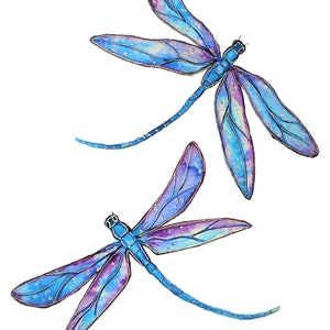 (CreativeWork) Dragonfly Dance (Small Framed Watercolor) by Linda Callaghan. watercolour. Shop online at Bluethumb.
