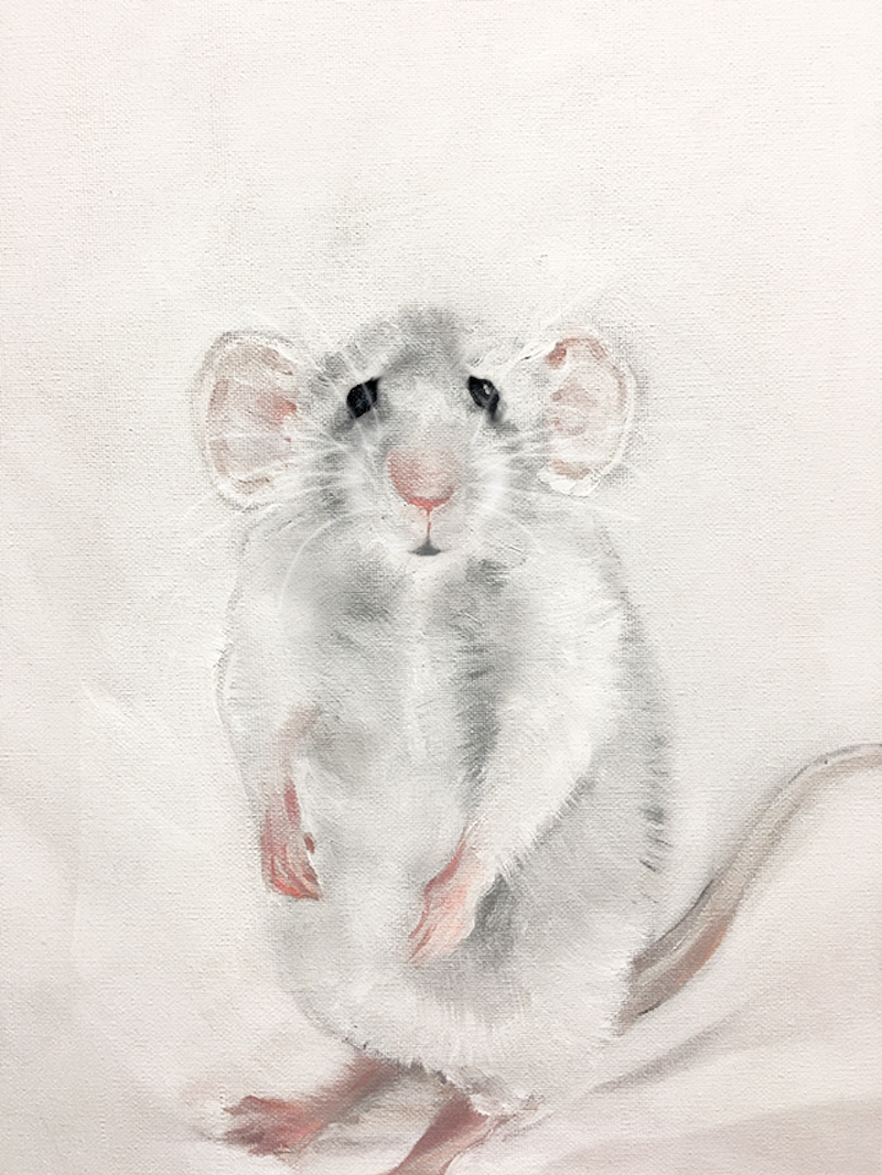 (CreativeWork) Kevin by Donna Christie. oil-painting. Shop online at Bluethumb.