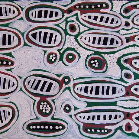 (CreativeWork) Seed Dreaming by Kumunjayi (Rosie) Tasman. Acrylic Paint. Shop online at Bluethumb.