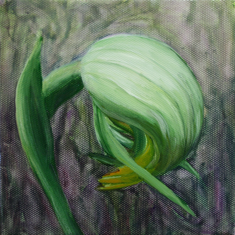 (CreativeWork) Nodding Greenhood Orchid by Stephanie Jakovac. oil-painting. Shop online at Bluethumb.