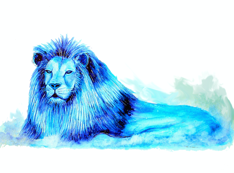 (CreativeWork) Blue Lion by Linda Callaghan. watercolour. Shop online at Bluethumb.