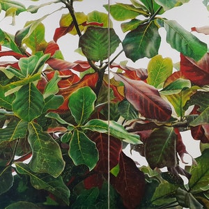 (CreativeWork) tropical almond leaves by Claire Souter. oil-painting. Shop online at Bluethumb.
