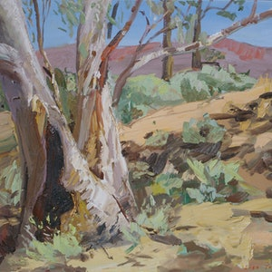 (CreativeWork) Aroona, Flinders Ranges by Lise Temple. oil-painting. Shop online at Bluethumb.