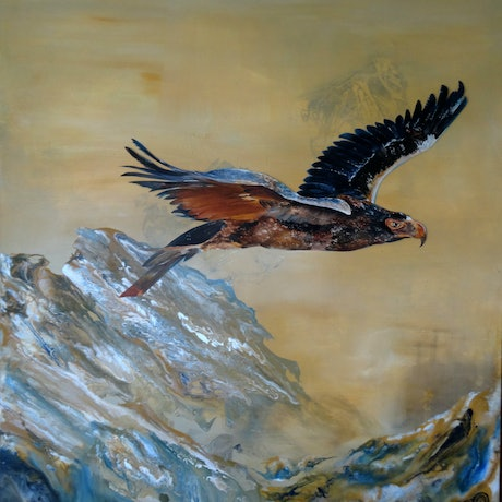 (CreativeWork) Flying High by Tricia Bradford. Acrylic Paint. Shop online at Bluethumb.