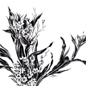 (CreativeWork) Twisted Leaves and Petals - Framed, ready to hang by Jahne Meyer. drawing. Shop online at Bluethumb.