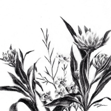 (CreativeWork) Floral - Framed, ready to hang  by Jahne Meyer. Drawings. Shop online at Bluethumb.