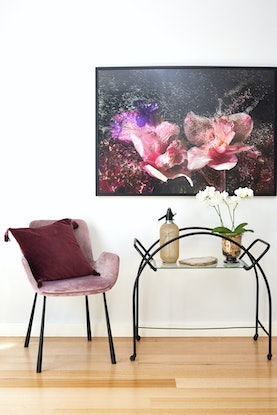 (CreativeWork) Orchard Road - FROZEN FLOWERS - A4 by Renee Tsironis. Photograph. Shop online at Bluethumb.