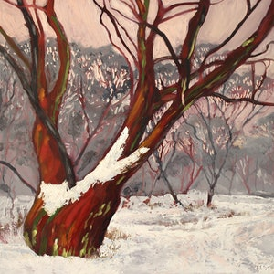 (CreativeWork) Snow gum glade by fiona smith. oil-painting. Shop online at Bluethumb.