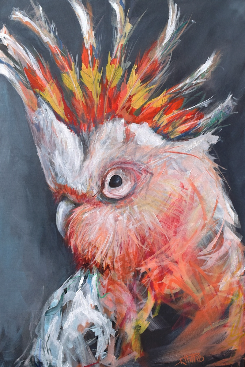 (CreativeWork) Major Mitchell - Fire Cocky by Rebecca Hill. arcylic-painting. Shop online at Bluethumb.