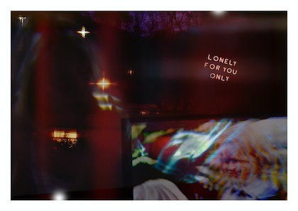 (CreativeWork) Lonely For You Only by Sarah Grace. photograph. Shop online at Bluethumb.
