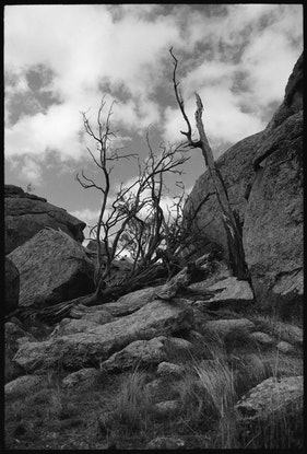 (CreativeWork) Morgan's Lookout Ed. 1 of 9 by Damian Seagar. Photograph. Shop online at Bluethumb.