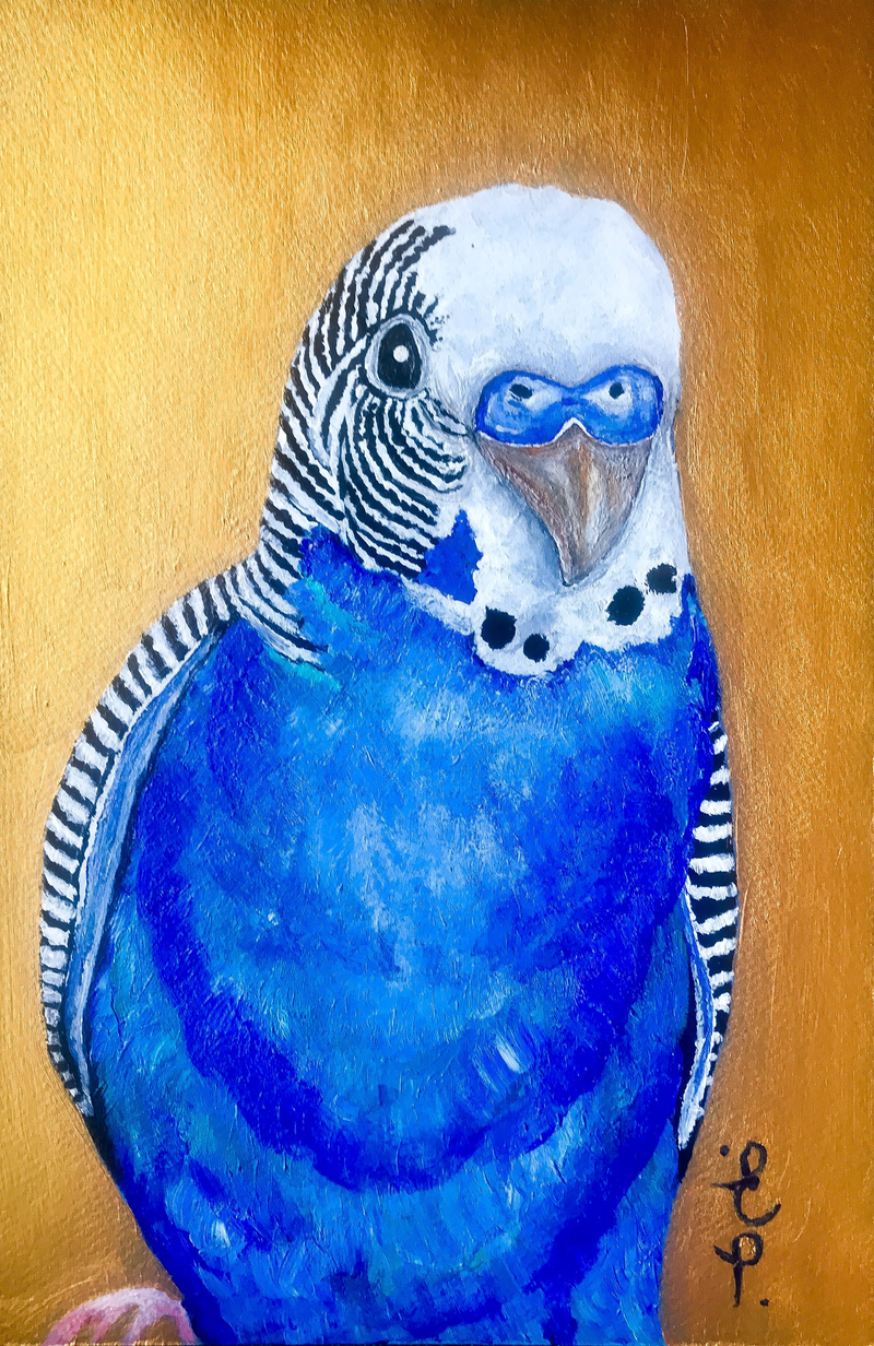 (CreativeWork) Bertie the Budgerigar.  by Erin Darmanin. arcylic-painting. Shop online at Bluethumb.