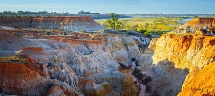 (CreativeWork) Renmark gully on the Riverland by Jim Gow. photograph. Shop online at Bluethumb.