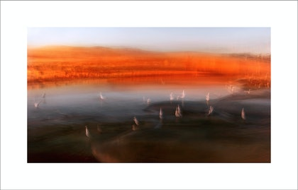 (CreativeWork) WADE IN THE TANGERINE LIGHT - ed 2 of 50 by Karen Visser. photograph. Shop online at Bluethumb.