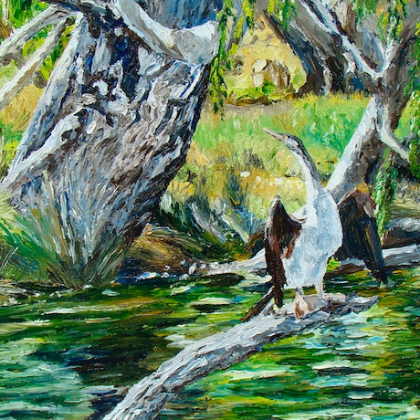 (CreativeWork) Cormorant drying by Andrea Henderson. Oil Paint. Shop online at Bluethumb.
