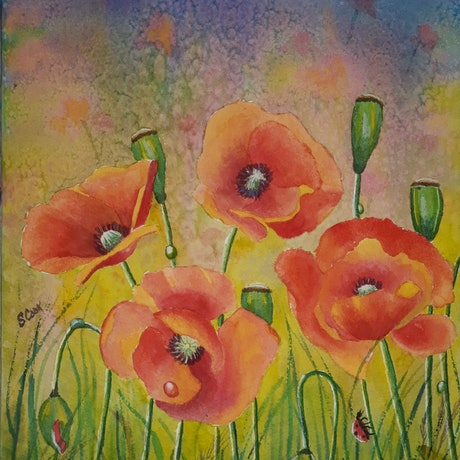 (CreativeWork) Poppies field fantasy by Svetlana Cook. Mixed Media. Shop online at Bluethumb.