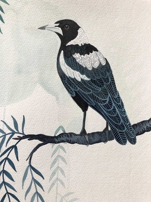 (CreativeWork) Peppercorn Magpies by Sally Browne. Watercolour Paint. Shop online at Bluethumb.