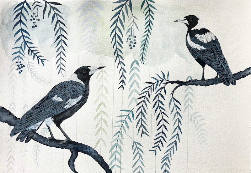 (CreativeWork) Peppercorn Magpies by Sally Browne. watercolour. Shop online at Bluethumb.