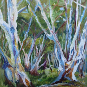 (CreativeWork) RED RIVER GUMS by Maureen Finck. oil-painting. Shop online at Bluethumb.