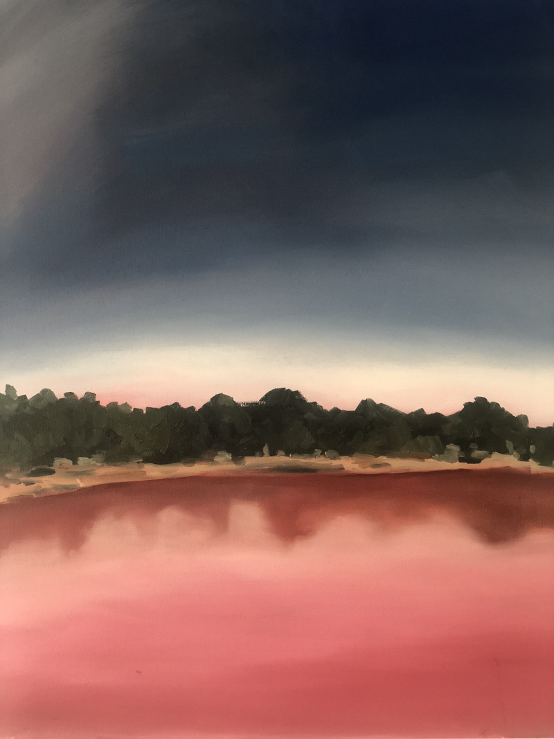 (CreativeWork) Pink Lake by Sandy Chen. Oil Paint. Shop online at Bluethumb.