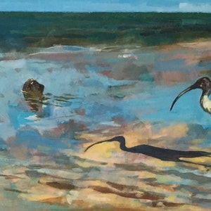 (CreativeWork) Strutting Ibis on the Eastwood Beach waterfront at Manly, Queensland -  part of my Ibis Collection, see my other paintings in this series by Scott Neil. arcylic-painting. Shop online at Bluethumb.