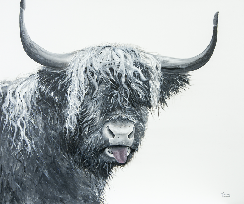 (CreativeWork) Cheeky One- Highland Cow by Johanna Larkin. arcylic-painting. Shop online at Bluethumb.