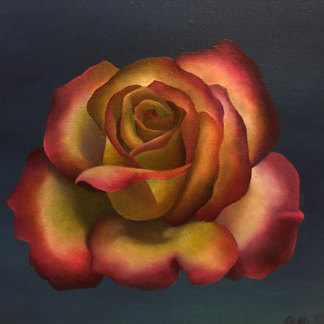 (CreativeWork) Rose no.3 by Holly Would. Oil Paint. Shop online at Bluethumb.