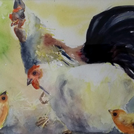 (CreativeWork) Chicken and chicks by Christine Manby. Watercolour Paint. Shop online at Bluethumb.
