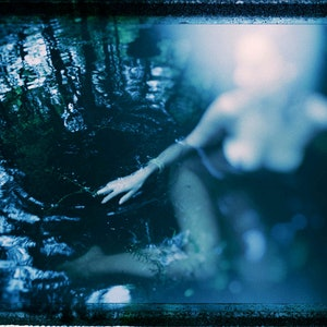 (CreativeWork) moonlit swim Ed. 1 of 20 by Peter Collie. photograph. Shop online at Bluethumb.