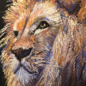 (CreativeWork) The majesty of a lion by Jane Davies. other-media. Shop online at Bluethumb.