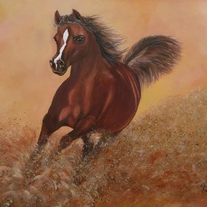 (CreativeWork) The gallops by Sandhya Padma. arcylic-painting. Shop online at Bluethumb.