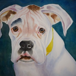 (CreativeWork) White boxer puppy by Svetlana Cook. watercolour. Shop online at Bluethumb.