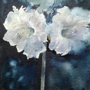 (CreativeWork) IN BLOOM by Anki Wickison. watercolour. Shop online at Bluethumb.