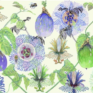 (CreativeWork) Summer Passion, print 7 of 150 by Judith Boyes. print. Shop online at Bluethumb.