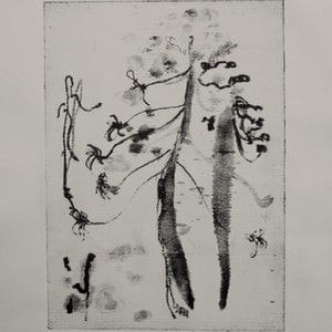 (CreativeWork) Bunya Study IV Ed. 1 of 4 by Claudia Husband. print. Shop online at Bluethumb.