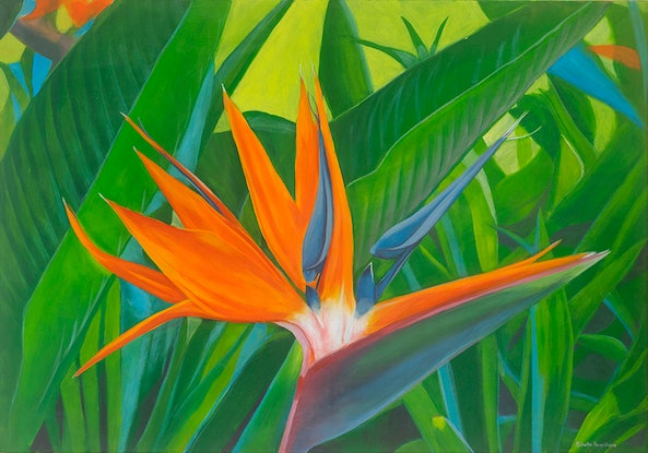 (CreativeWork) Bird of Paradise by Michelle Angelique. Acrylic Paint. Shop online at Bluethumb.