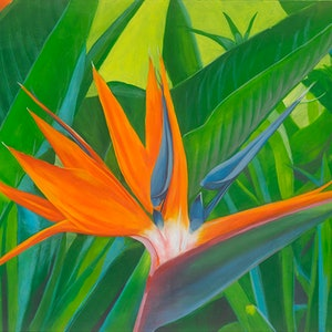(CreativeWork) Bird of Paradise by Michelle Angelique. arcylic-painting. Shop online at Bluethumb.