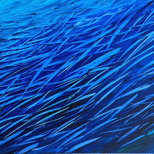 (CreativeWork) Fish Frenzy by David Clare. acrylic-painting. Shop online at Bluethumb.
