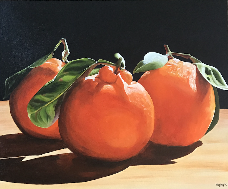 (CreativeWork) Brian's Beauties by Hayley Kruger. arcylic-painting. Shop online at Bluethumb.
