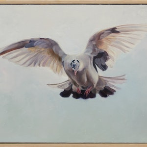 (CreativeWork) Hope by Brooke Walker. oil-painting. Shop online at Bluethumb.