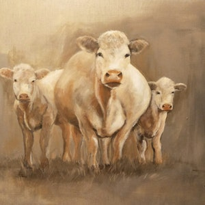 "(CreativeWork) ""Charolais family""  by Kylie van Tol. arcylic-painting. Shop online at Bluethumb."