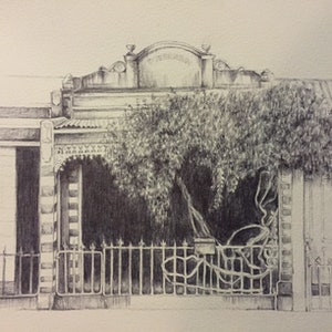 (CreativeWork) Overgrown by Genevieve Maladay. Drawings. Shop online at Bluethumb.
