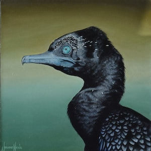 (CreativeWork) Little Black Cormorant by Joanne Nicole. oil-painting. Shop online at Bluethumb.