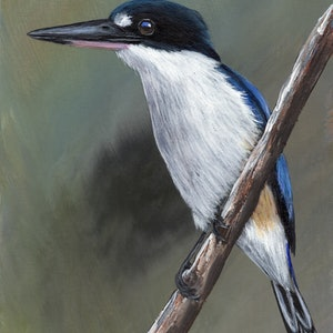 (CreativeWork) Forest Kingfisher by Janet Graham. arcylic-painting. Shop online at Bluethumb.