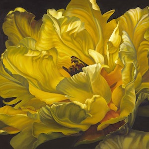 (CreativeWork) Shades of Gorgeous Yellow - A2 Limited Edition print Ed. 2 of 40 by Hetty Thompson. print. Shop online at Bluethumb.