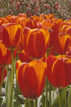 (CreativeWork) Tulips - A1 Limited Edition print Ed. 1 of 10 by Hetty Thompson. Print. Shop online at Bluethumb.