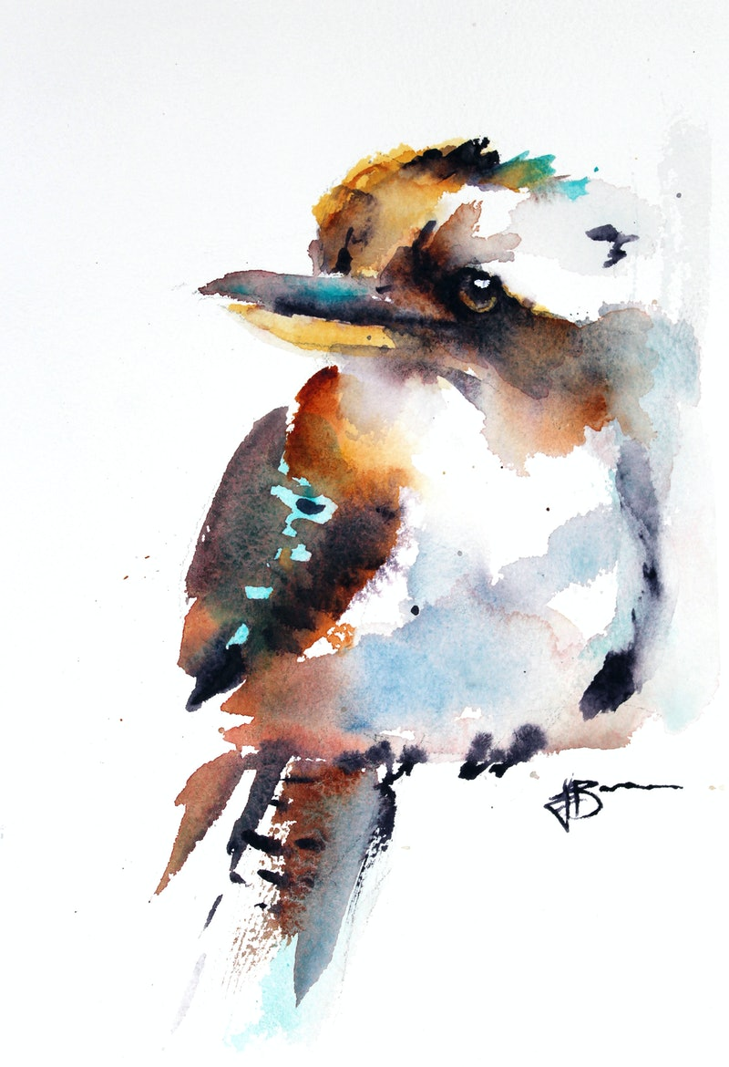 Australian Kookaburra By Jenny Barnes Paintings For Sale
